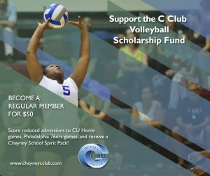 volleyball scholarship